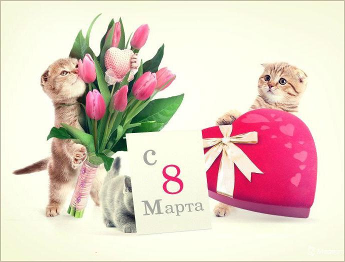Картинки с 8 марта котята