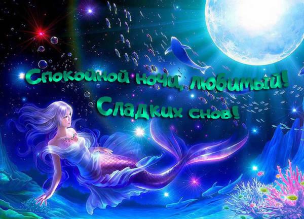 Спокойной ночи и сладких снов любимому