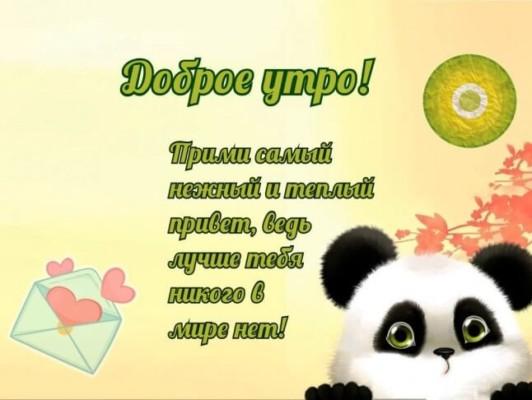 Пожелания любимому с добрым утром и хорошим днём