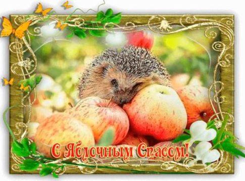 Скачать самую красивую открытку Яблочный Спас