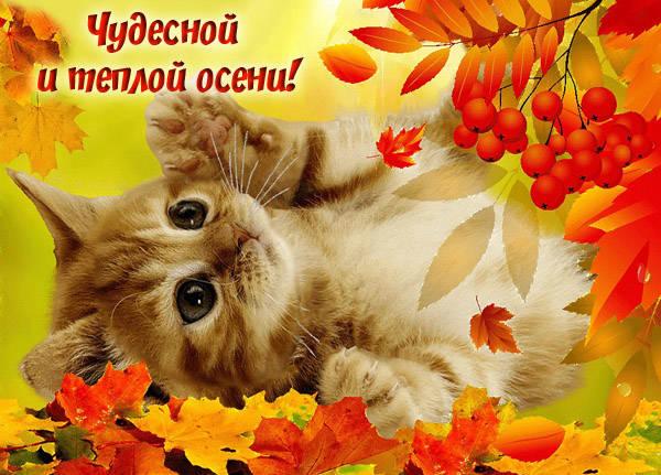 Осенние картинки с пожеланиями доброго утра скачать