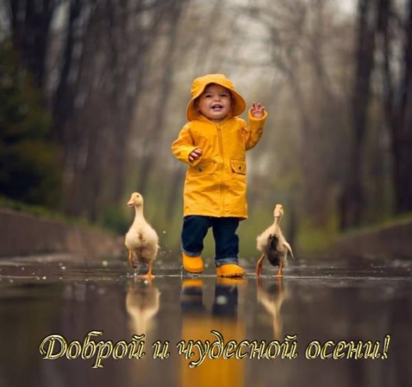 Доброй и чудесной осени - красивая картинка