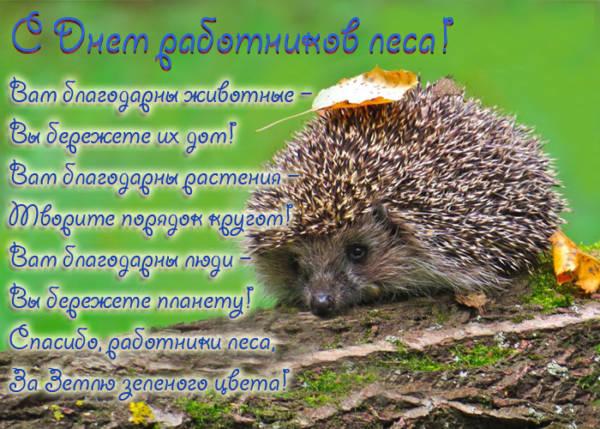 С Днем работника леса открытки красивые бесплатно