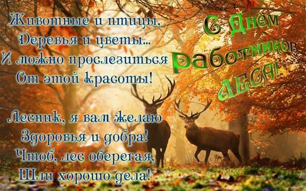 Красивые поздравления с Днем работников леса открытки скачать бесплатно