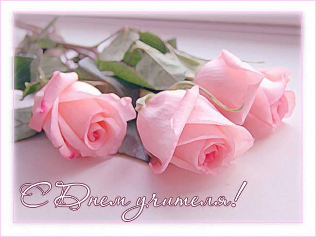 С Днем учителя - нежные открытки с розами
