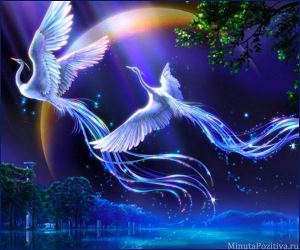Красивые пожелания спокойной ночи любимому своими словами, в стихах, в прозе