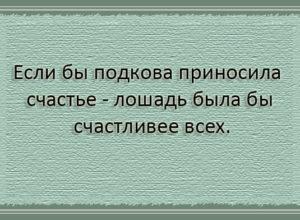 Лучшие цитаты и афоризмы