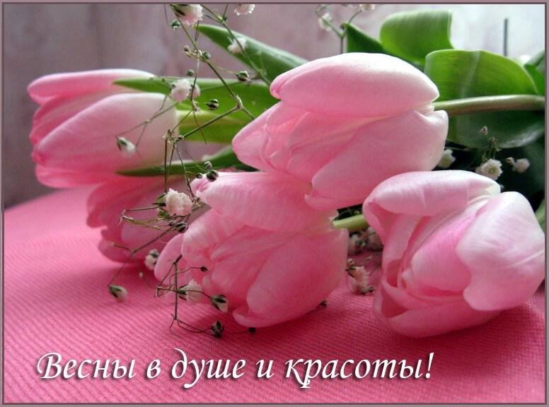 Картинки для весеннего настроения тюльпаны