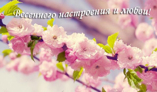 Пожелание весеннего настроения и любви
