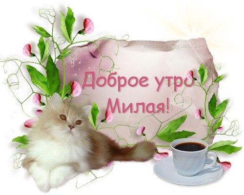 Доброе утро милая картинки