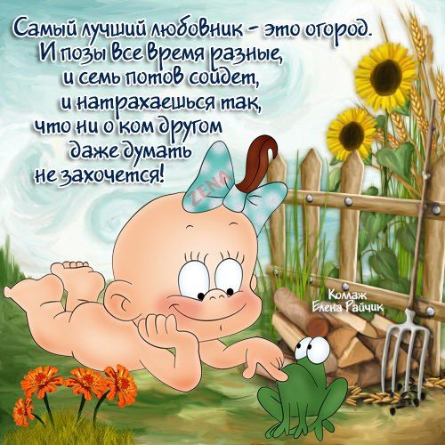 Дача и огород смешные картинки