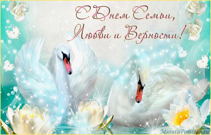 День семьи любви и верности лебеди