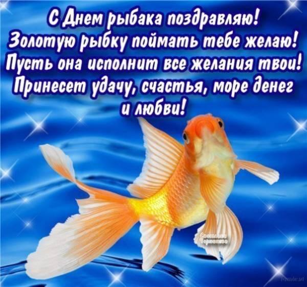 С Днем рыбака поздравления и картинки прикольные