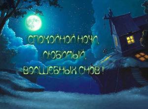 Спокойной ночи и волшебных снов картинки для любимого