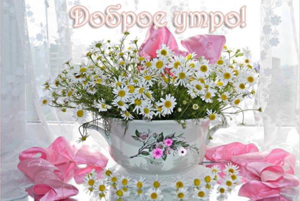Красивые картинки с Добрым утром - летние цветы