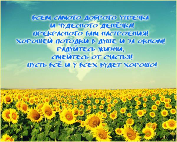 Доброе утро картинки красивые летние с пожеланиями чудесного дня