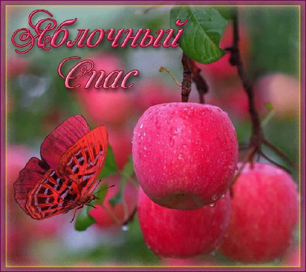 Красивая картинка к Празднику Яблочный Спас скачать
