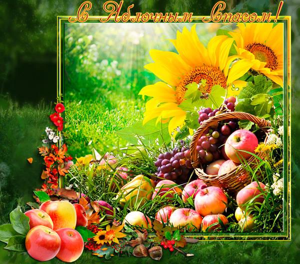 Оригинальные и красивые открытки с Яблочным Спасом хорошего качества