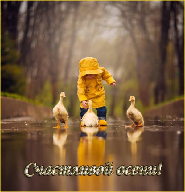 Картинка осенняя, добрая - Счастливой осени