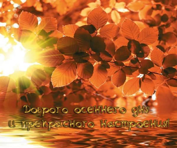 Доброго осеннего дня и хорошего настроения красивые картинки бесплатно