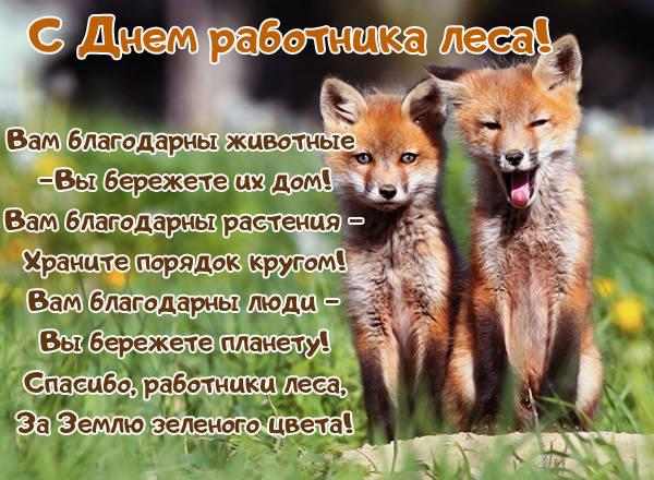 День работников леса поздравления открытки