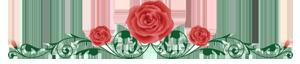 Изображение - Поздравления с днем ангела людмила прикольные razdelitel-roza