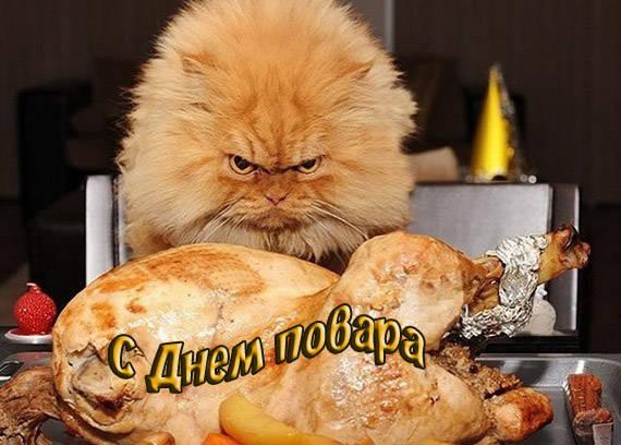 Смешные и прикольные картинки с Днем повара