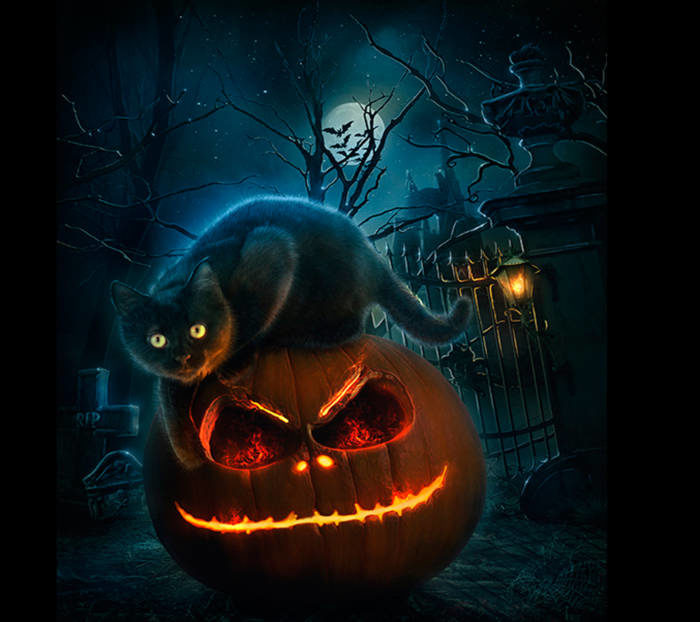 Картинки на Хэллоуин красивые и прикольные