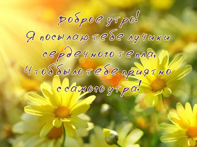 Доброго утра и хорошего дня пожелания в картинках
